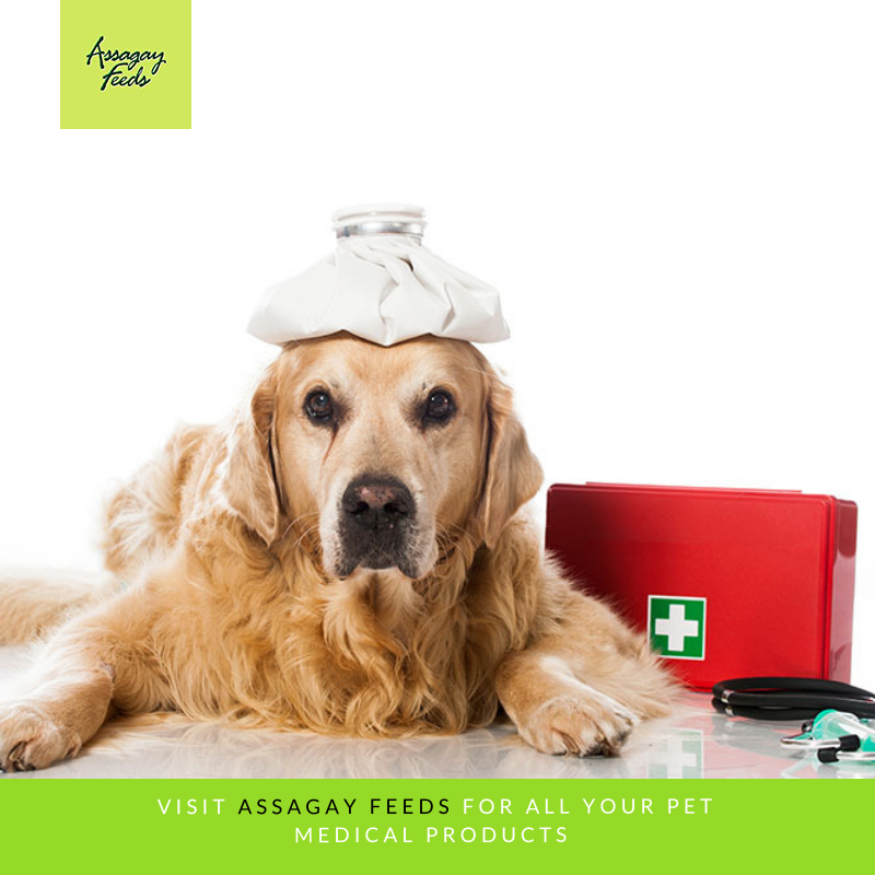 Assagay Feeds pet is sick pet medical supplies